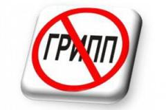 http://www.votkinsk.ru/upload/iblock/c8b/gripp_1_.jpg